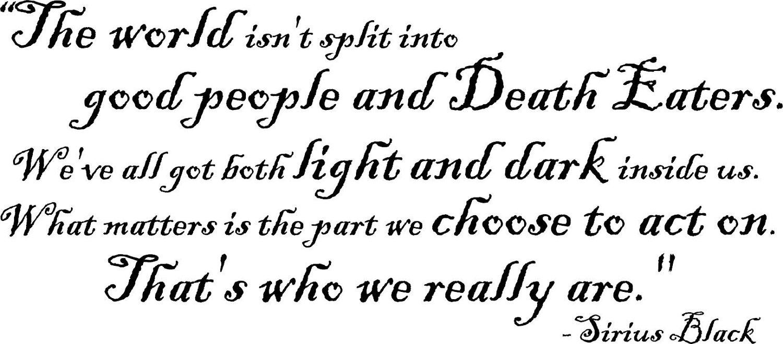 Light And Dark Quotes Sirius Black Quote  ऋभु वशिष्ठ Ribhu Vashishtha