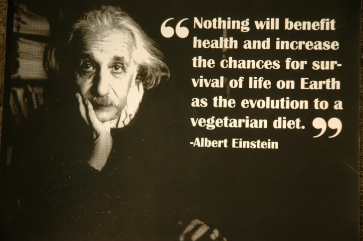 Albert-Einstein-vegetarian-quote