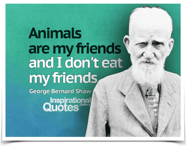 George-Bernard-Shaw-Animals-are-my-friends-and-I-dont-eat-my-friends