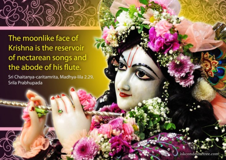 Quotes-by-Chaitanya-Caritamrta-on-Moonlike-Face-of-Krishna