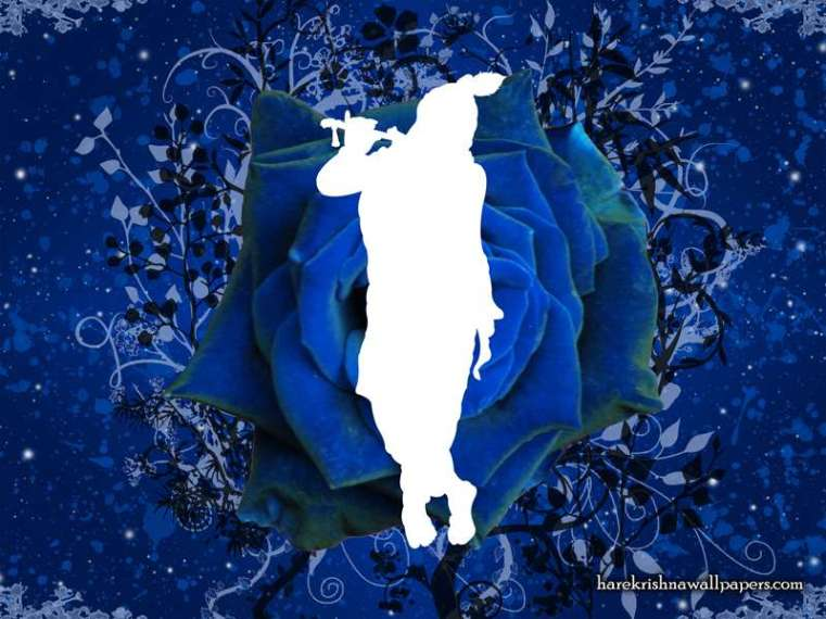 001-Blue_Krishna