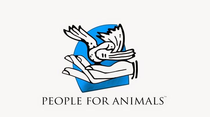 PFA logo - High Res (NEW)