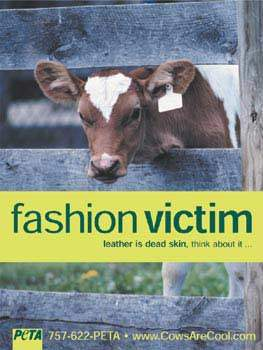fashion-victimcow